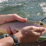 Missouri Trout Fishing
