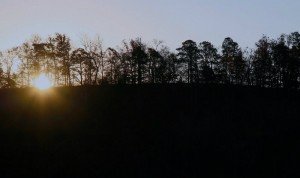 A winter sunrise looking east from the treetop loft