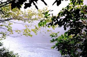 A North Fork River dawn