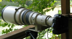 Canon 5D with 600mm L EF IS Lens at ROLF