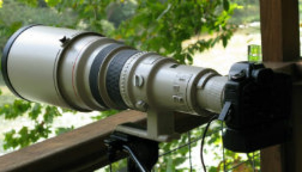 Canon 5D with 600mm L EF IS Lens at ROLF featrured