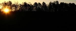 Dawn at ROLF on Nov 6 08