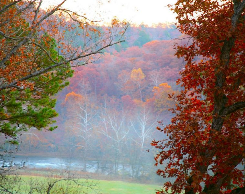 Fall view from the Treetop Loft at ROLF