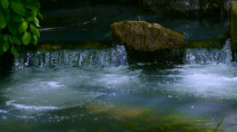 Large Spring at RockBridge in May 2009 featured