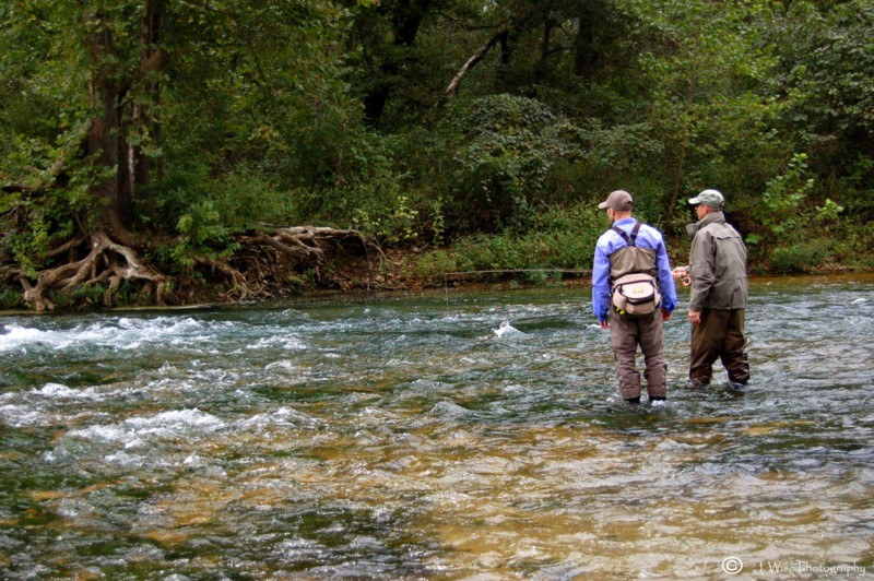 Missouri fly fishing trout fishing guide brian wise for Trout fishing in missouri