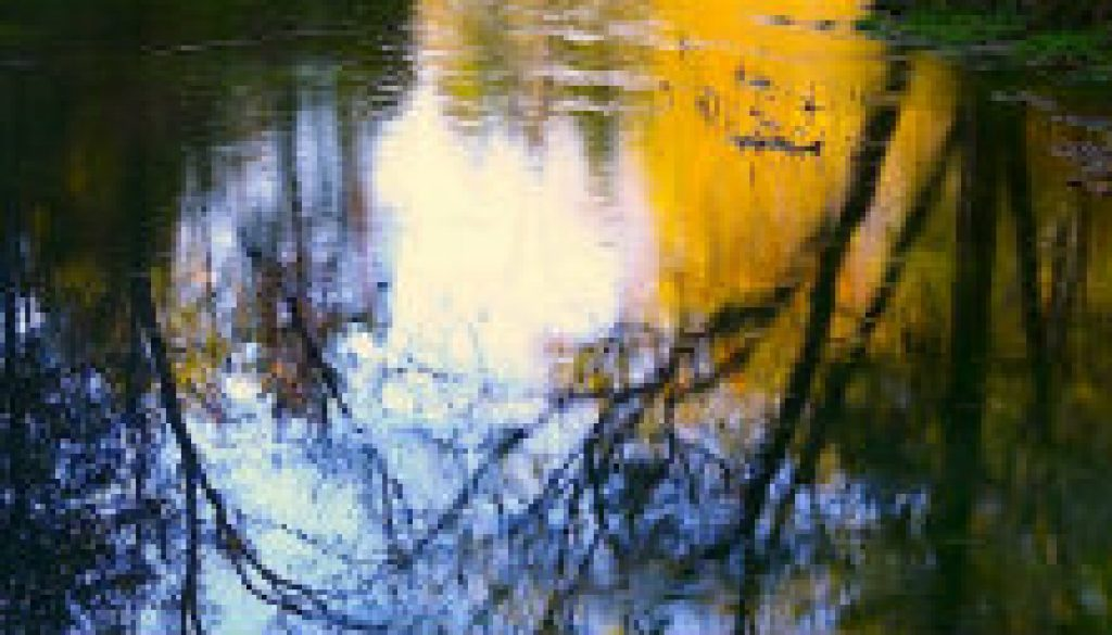 North Fork Sycamore Reflections sep 28 featured