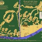 ROLF map