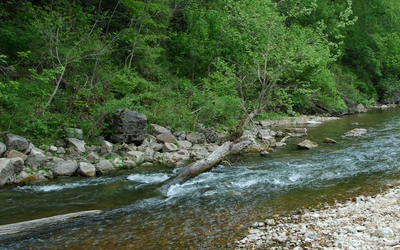 Smallmouth fly-fishing water on the upper North Fork