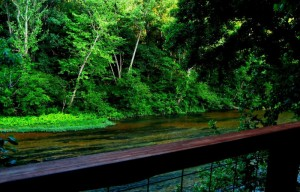 What makes the North Fork so special