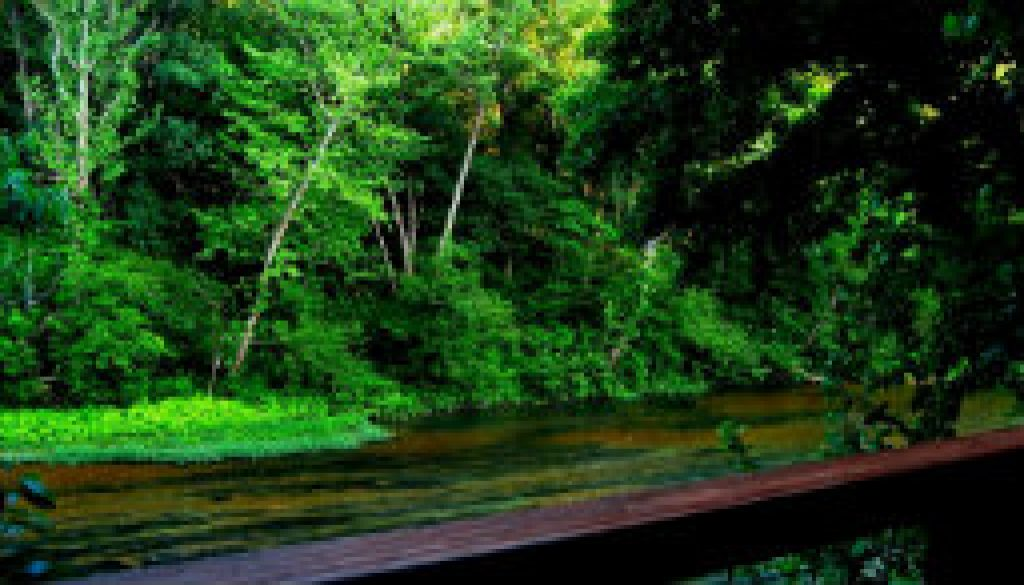 What makes the North Fork so special featured