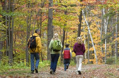 Mark Twain National Forest Hiking