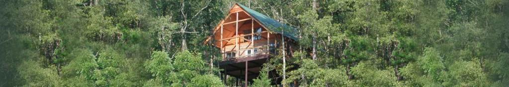 Missouri treehouse vacation log house