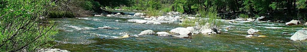 Missouri trout fishing - River of Life Farm