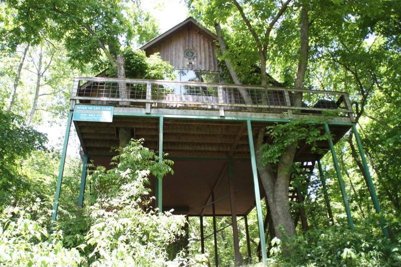 Missouri Tree House Cabin