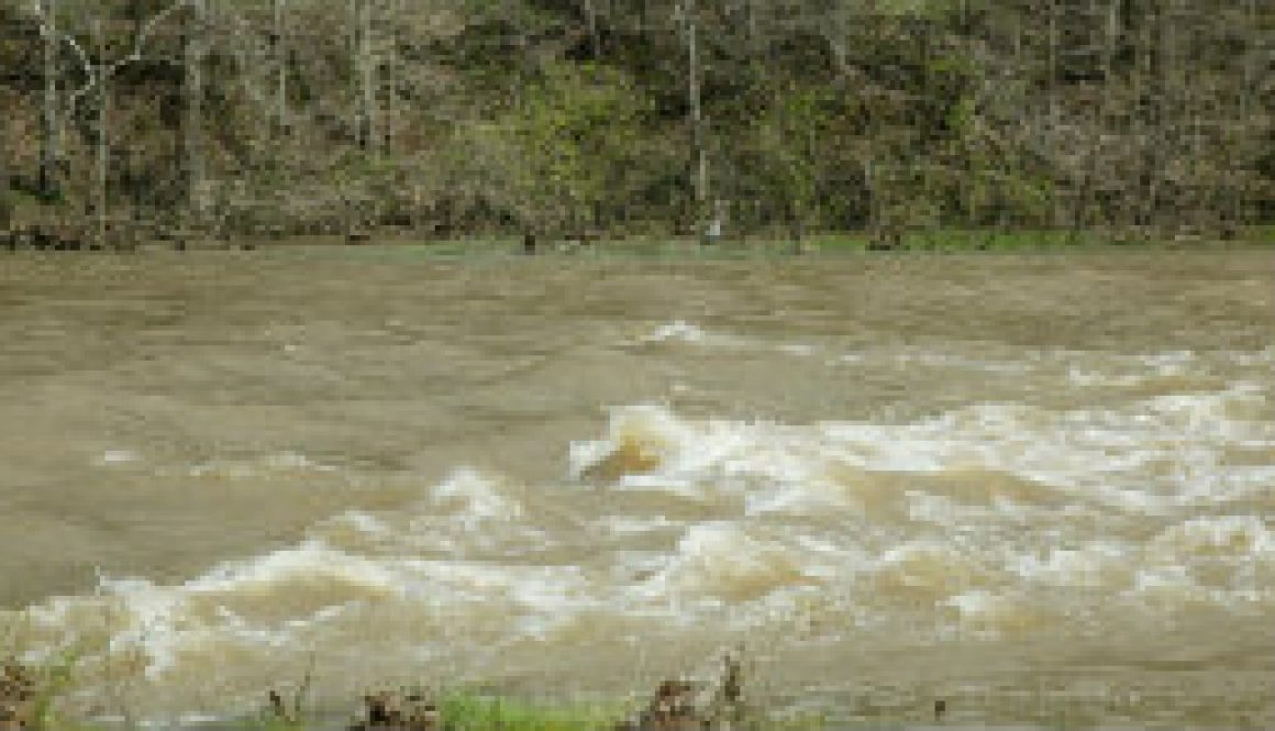 A four foot rise in the North Fork one year ago featured