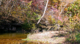 A late fall day on Spring Creek above Rockbridge Mill featured