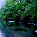 An evening float past Rainbow Springs1