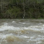 Another group of April pictures @ 4000 CFS