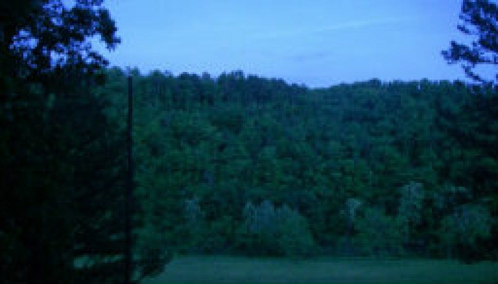 Full Moon 521 at ROLF TreeTop Loft featured