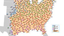 Hummingbirds migration for 2009 has begun featured