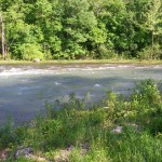 North Fork River (at falls) at 1900-2000 CFS1