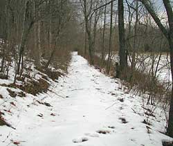Old Wagon Road along the Bryant Creek