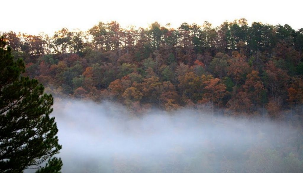 River of Life Farm; river valley on an October morning