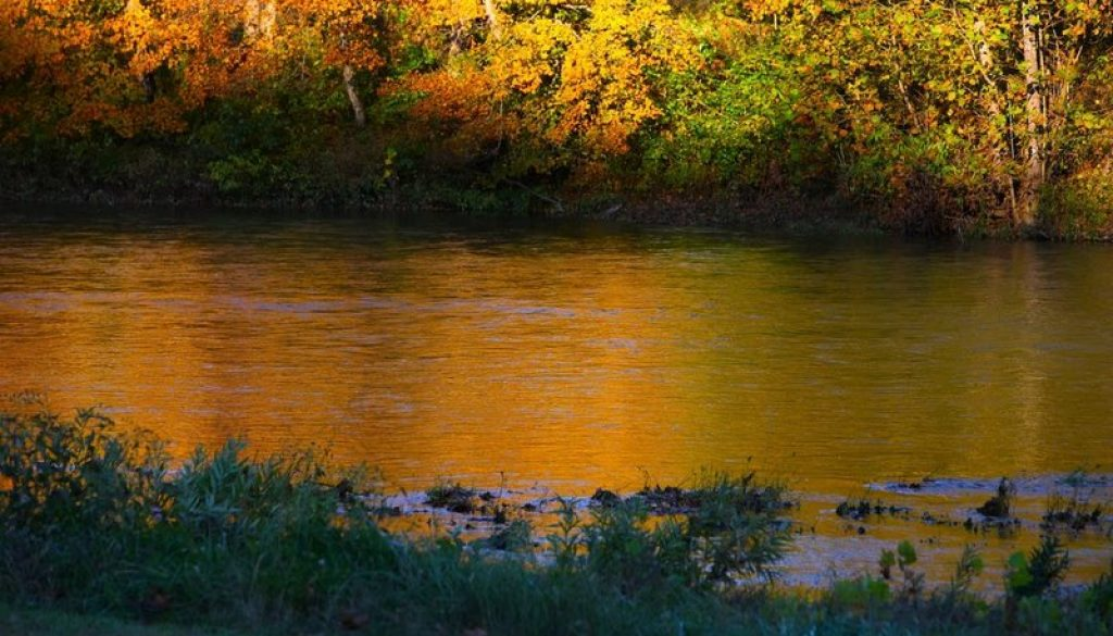The Golden Hour at River of Life Farm