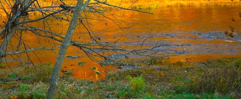 The Golden November North Fork Evening