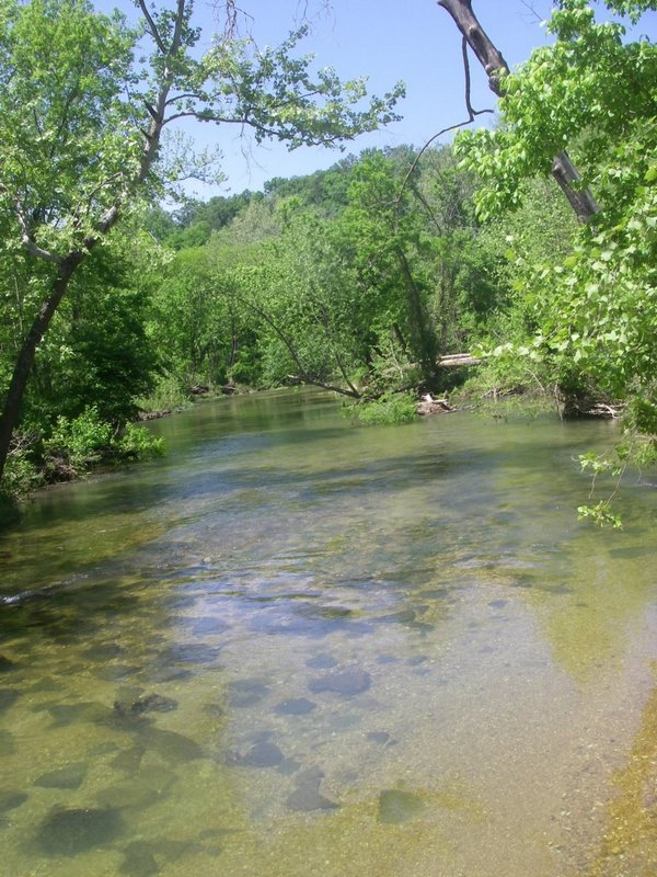Upper North Fork River in early May