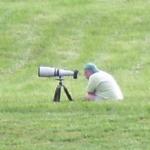Using a long lens to capture bluebirds