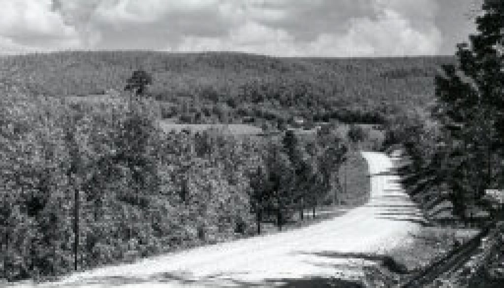 West Plains to Dora Road in 1964 featured