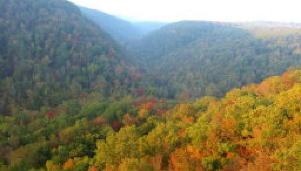 Worthwhile day trip from ROLF to Hawksbill Crag featured