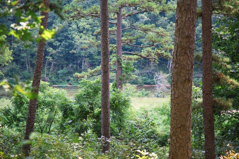 Missouri Romantic Treehouse Cabin Whispering Pine