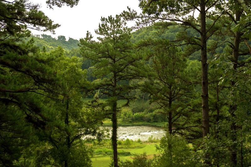 Missouri River Rose Treehouse Cabin