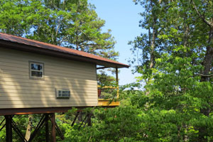 Kingfisher Treehouse Cabin Ozarks