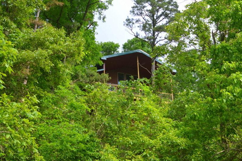Missouri Treehouse Rio Vista Cabin