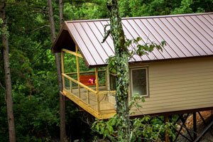 River Rose Treehouse Cabin