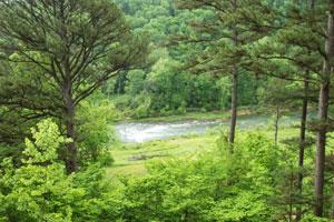 Missouri Romantic Treehouse Cabin River Falls