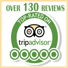 Trip Advisor reviews River of Life farm