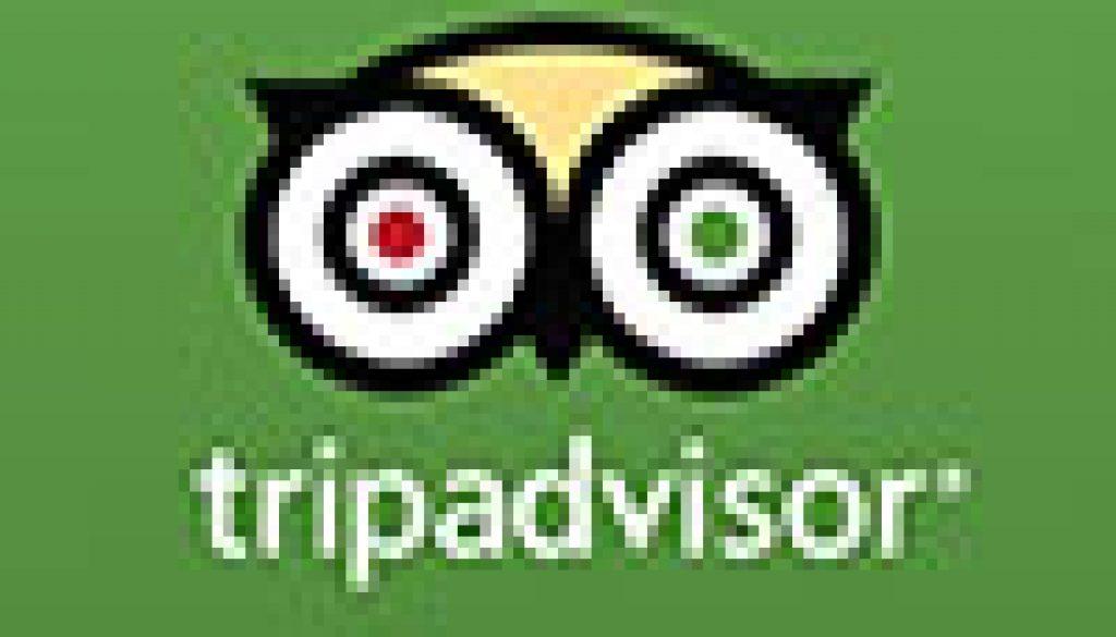 TripAdvisor-Logo100