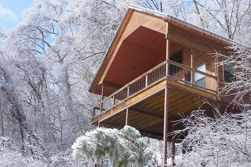 Cedar-Chest-winter-800